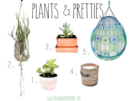 plants and pretties diva on a dime interiors